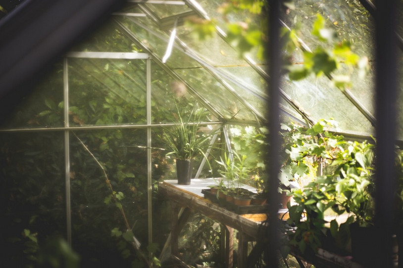 Comment choisir une bonne serre de jardin